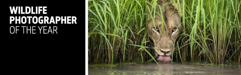 natural-history-wildlife-oct